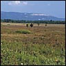 Shawangunk National Grasslands